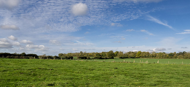 Green fields and blue skies