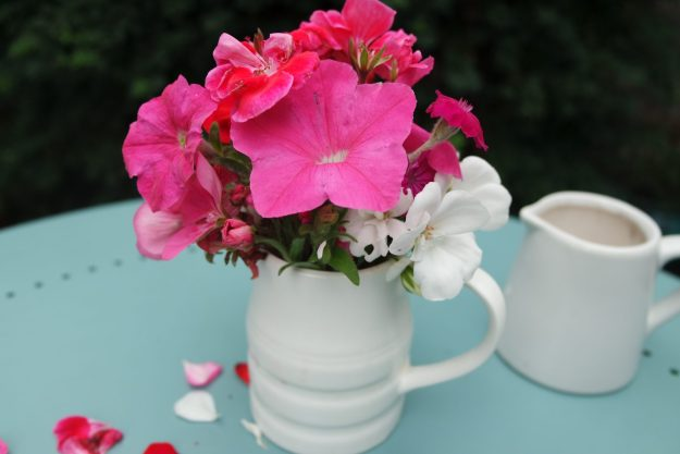 pelargonium, petunia and campion in a white jug