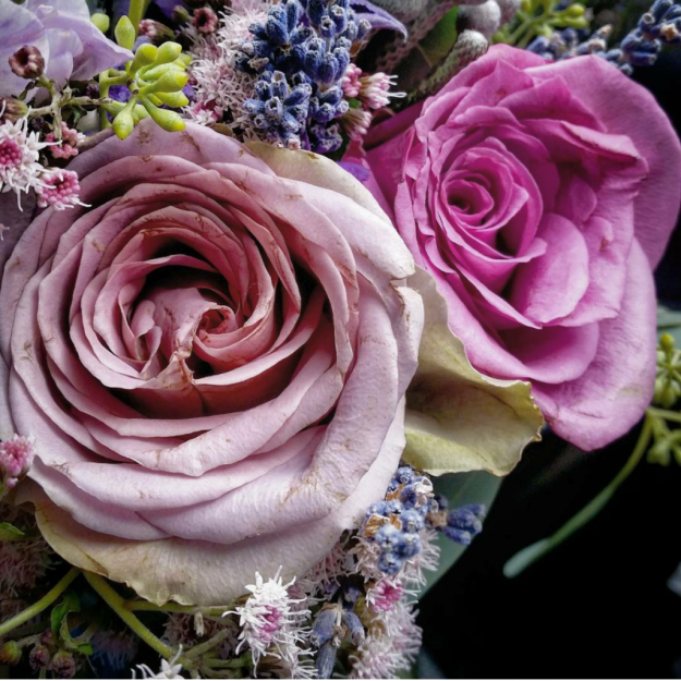 wedding bouquet - lavender (from our garden), antique lilac rose, aster, freesias