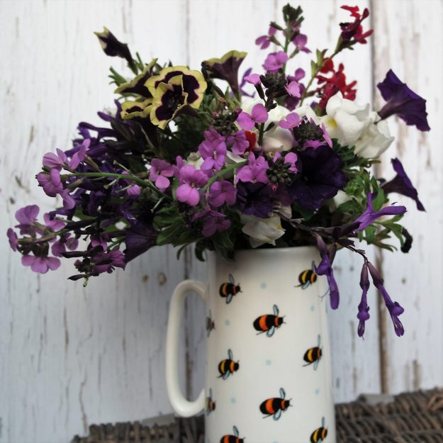 Salvia, petunia, wallflower and snapdragon with a white jug with bees on it 19 November 2018