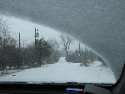 snowy day 051