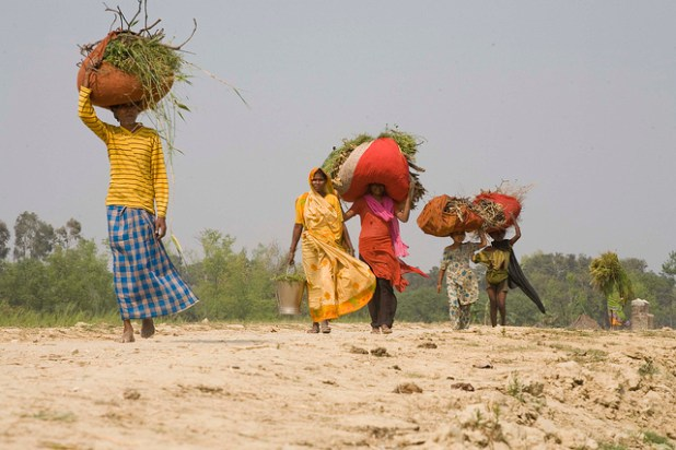 Female farmers carry crops on one of the only two roads leading to Kushumhi village in Uttar Pradesh state. India has one of the highest incidence of hunger in the world. (Photo courtesy Gates Foundation)