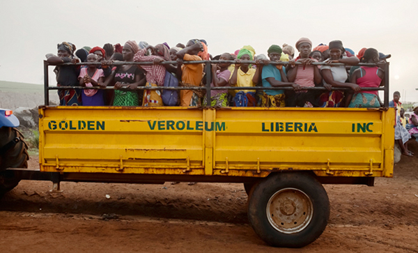 Golden Veroleum workers cram onto a tractor-drawn flatbed on their way to plant and water the fields. (Photo by Marci Di Lauro, via Onearth)