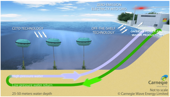 (Image courtesy CETO/Carnegie Wave Energy)