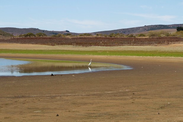 Nearly empty Nicasio Reservoir in California due to prolonged drought. (Photo by Yana Edwin Murphy, Creative Commons License)