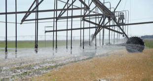 Farmers are Depleting the Ogallala Aquifer with Govt. Support