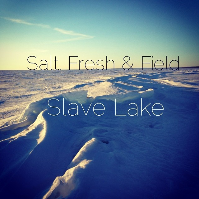 saltfreshandfield