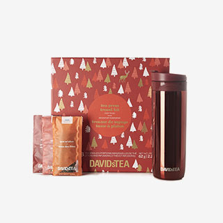 David's Tea Press Travel Kit - View the VIBE