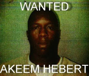 WANTED  - Akeem Herbert without Dread Locks