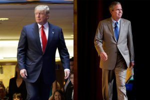 donald and jeb