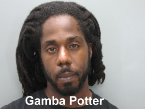 Mug Shot - Gamba Potter