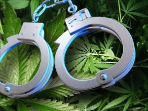 marijuana-arrest