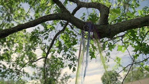 The tiara ends up on a tree, not unlike the ritual victims.