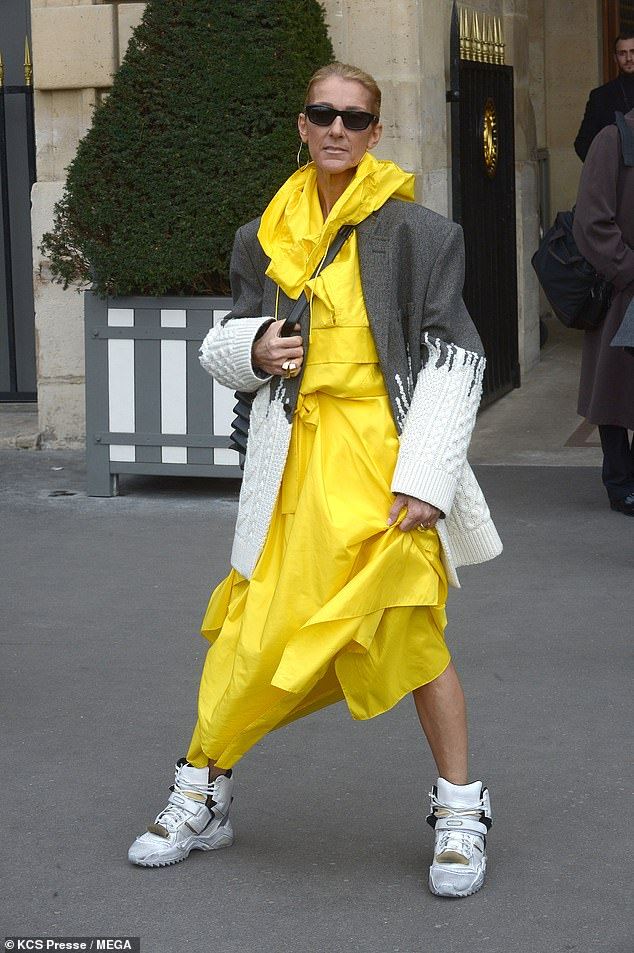 What is Happening to Céline Dion?