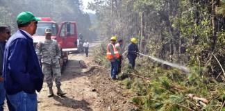 Bomberos controlan focos del incendio en Valle Nuevo