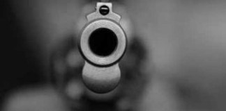pistola difusa
