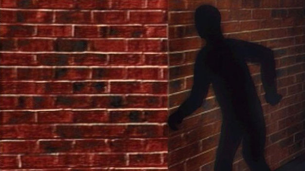 Los ladrones previamente cortaron el servicio eléctrico de la vivienda.