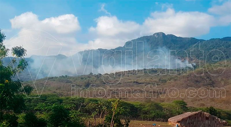 Incendio forestal destruye cordillera Septentrional en Jicomé