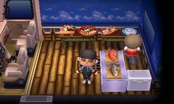Campground | Animal Crossing Wiki | Fandom on Kitchen Counter Animal Crossing  id=24748