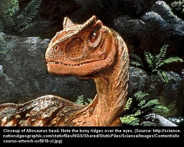 River Dinos Cryptid Wiki FANDOM Powered By Wikia