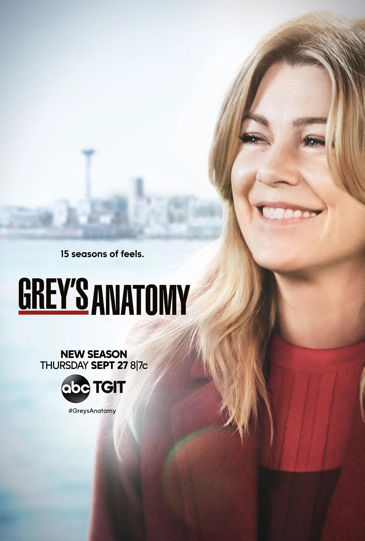 Season 15 (Grey's Anatomy) | Grey's Anatomy Universe Wiki ...