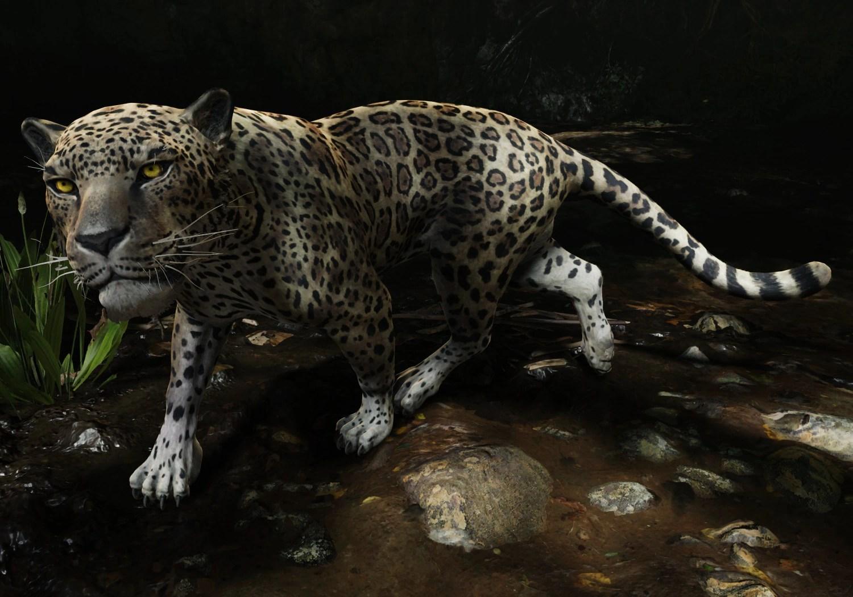 Jaguar Lara Croft Wiki FANDOM Powered By Wikia