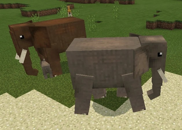 Elephant Wildlife Savanna Minecraft Mobs Wiki FANDOM
