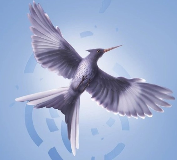Mockingjay  bird    The Hunger Games Wiki   FANDOM powered by Wikia Origin  Mockingjay from 3rd book cover