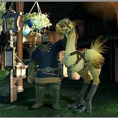 Chocobo Final Fantasy XIV Final Fantasy Wiki FANDOM