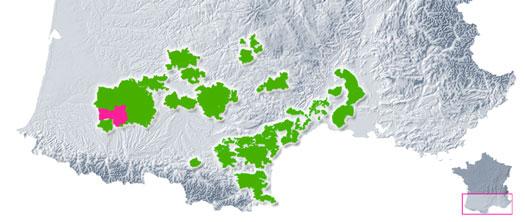 Vignoble de Saint Mont