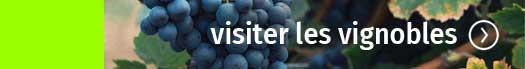 visiter les Vignobles d'Occitanie