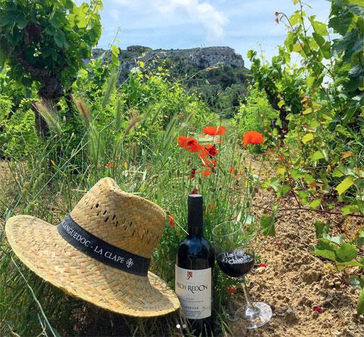Vignobles d'Occitanie
