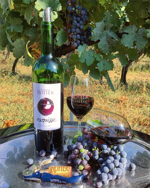 Esquisse - Domaine Rotier - Vins de Gaillac