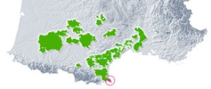 Vignoble de Collioure et Banyuls