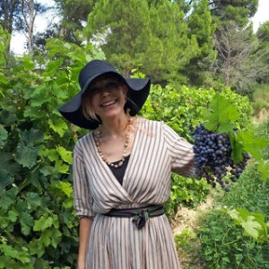 Vignobles d'Occitanie - Visiter les vignobles