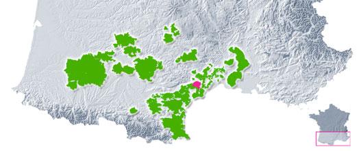 Vignoble du Languedoc Pézenas