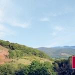 Mas Camps - Vins de Maury et du Roussillon