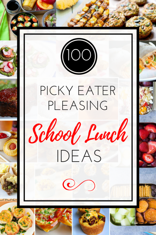 Creative Cold School Lunch Box Ideas For Pickey Eaters