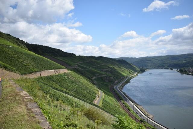 Mittelrhein viinialue