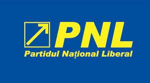 PNL la putere