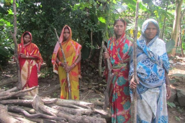 The village women patrol their forest in shifts with sticks PC- Rakhi Ghosh
