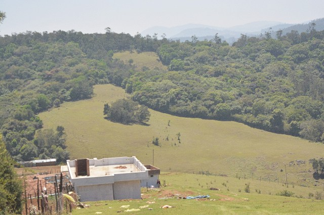 A typical shola-grassland ecosystem of the Nilgiris.