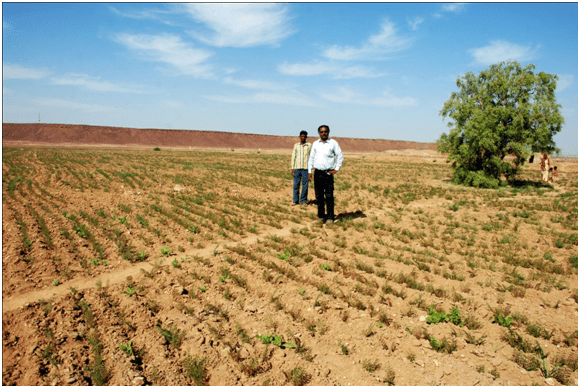 Jethu Singh in one of the farms that follows the Khadin system of agriculture