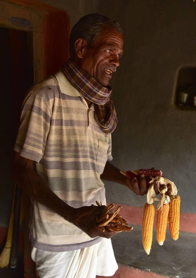 Loknath Navri with maize
