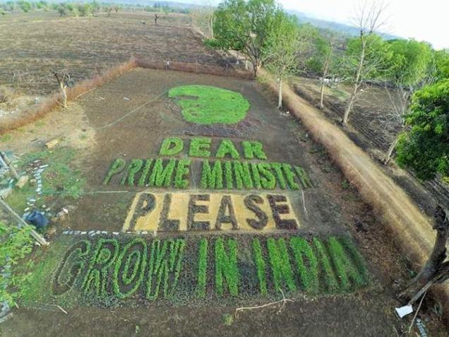 The land art piece grown in the village of Paradsinga in Madhya Pradesh.