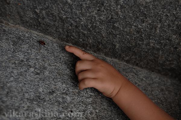 child and bug