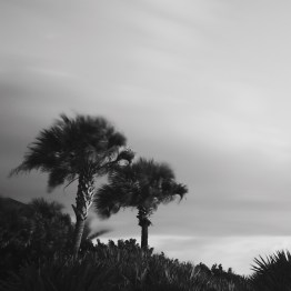 Breezy Palms, Ormond Beach, FL