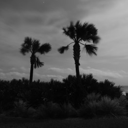 Breezy Palms, Ormond Beach, FL