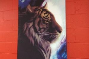 tiger illustration viking forge design