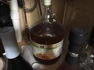 1 Gallon Hot Pepper Mead Project